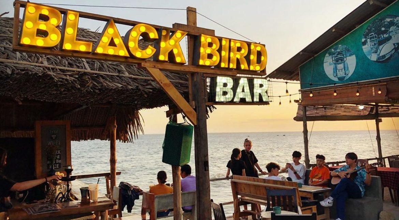blackbirdmuine_20200604_120921_0